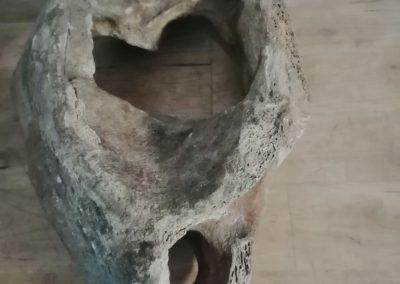 Mammutwirbel